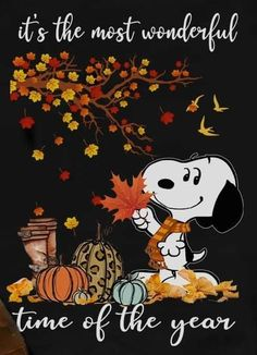 Snoopy Love, Charlie Brown And Snoopy, Snoopy And Woodstock, Snoopy Beagle, Happy Karwa Chauth, Peanuts Characters, Fictional Characters, Miss Images, Peanuts Snoopy
