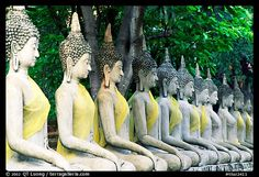 Row of Buddha images in Wat Chai Mongkon, reverently swathed in cloth. Ayuthaya, Thailand