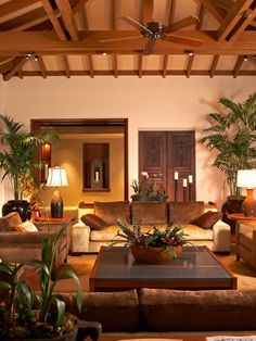 Tropical Living Room by Ownby Design <3 the plants