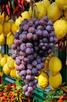 Grapes and lemons at a market stall in Sirmione, a town on Lake Garda, Italy