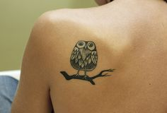<3 this owl