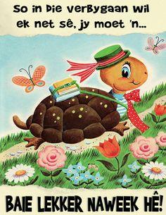 Goeie Nag, Goeie More, Afrikaans, Good Morning Quotes, Blessings, Amanda, Qoutes, Turtle, Kids Rugs