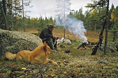 Hunter and finnish spitz at fire (happy dog). Spitz Dogs, Fox Face, Dogs And Kids, Shetland Sheepdog, Wild Dogs, Pembroke Welsh Corgi, Hunting Dogs, Happy Dogs, Doge