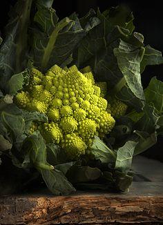 Cavolo romanesco - Roman cabbage