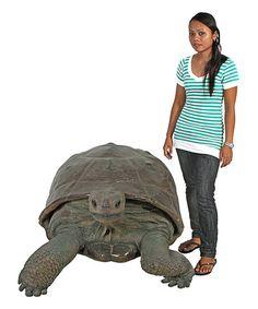 Design Toscano Giant Galapagos Tortoise Statue | zulily