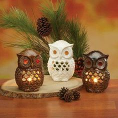 CC Home Furnishings Pack of 6 In the Birches Ceramic Owl Tea Light Candle Holders Candle Holders Owl Home Decor, Owl Kitchen, 6 Candles, Beeswax Candles, Whimsical Owl, Sculptures Céramiques, Ceramic Candle Holders, Ceramic Owl, Ceramic Decor