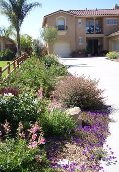 Landscape designed for water conservation and low maintenance. This is a great idea for that narrow stretch of property between your house and your neighbor's.