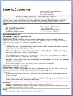 sample resume for government jobs