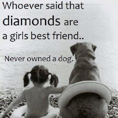 Whoever said diamonds are a girls best friend....never owned a dog.    Diamonds are a WOMANS best friend!