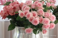 9月のイベントご案内☆☆☆の画像 | アフリカの花屋(はぎうだめぐみ)のブログ