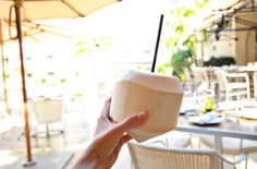 A Vegan Friendly + Healthy Eating Restaurant Boca Raton Florida Guide - OhDearDrea
