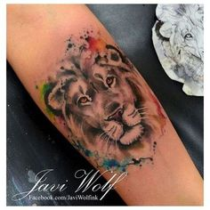 coolTop Watercolor tattoo - 50 Lion Tattoo Designs and Ideas for Men and Women