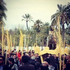 #PasdelaBurreta #procesion #palmas #domingoderamos #semanasanta #elx #elche #visitelche #palmeras - @kehyna- #webstagram