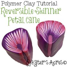 Polymer Clay Reversible Petal Cane Tutorial by KatersAcres