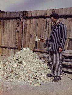kz buchenwald Was im Krematorium von den verbrannten Leichen übrig blieb: Ein Ex-Häftling vor einem Haufen von Knochenresten. Foto: National Archives, Washington