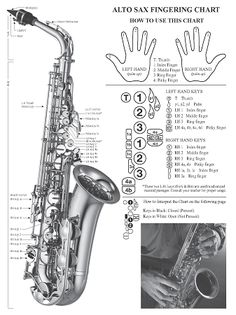 See related links to what you are looking for. Alto Saxophone Fingering Chart, Alto Sax Finger Chart, Soprano Saxophone, Music Classroom, Music Theory, Piano Music, Online Images, Music Notes, Musicals