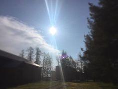 Terveisiä risukasasta! Nyt tänne paistaa. Tosin tuulee kuin tunturissa. Voimakkaasti puuskaisena ja kylmällä ytimellä. Muuttopäivä. #t