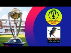 Maasranga TV Live - YouTube Live Cricket Channels, Tv Live Online, Entertainment, Teaching, Videos, Youtube, Video Clip, Teaching Manners, Entertaining
