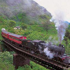 Les plus beaux voyages en train à travers le monde