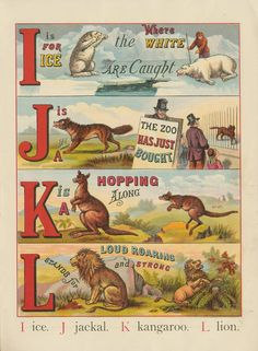Public Domain Images The Abc Of Animals Vintage Childrens Book Free Public Domain Images