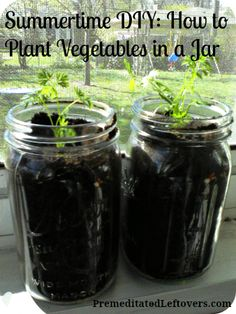 How to grow vegetables in a jar - fun summer project for kids (especially if you use root vegetables!
