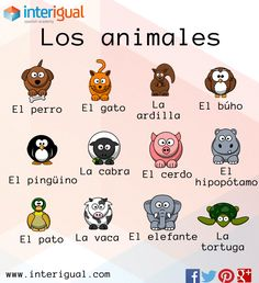 Los animales en español/ The animals in spanish