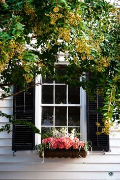 love the white house, dark shutters and bright flowers!