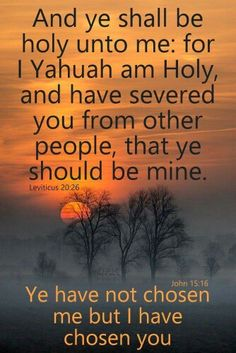 629 Best Edification Of Yahuah images in 2018 | Bible, Torah