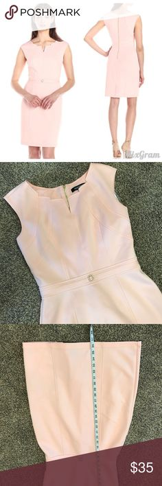 Ellen Tracy Dress size 4 Gorgeous light pink flattering fit with shaped neckline. This is form fitting but is perfect for work, events or parties. There is some very minor scuffing in the front that can't be seen unless you are looking for it 💠From a clean and smoke free home!💠 Add to a bundle to get a private discount 💠 Discount ALWAYS Available on 2+ items💠 No trades, holds, modeling or transactions off of Poshmark.💠 Ellen Tracy Dresses