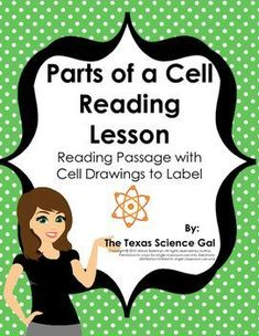 This download is perfect if you are looking for a way for students to develop their reading skills within the science classroom setting. Reading, decoding word meaning, and visualizing is necessary in every content area.This passage contains 3 pages of r