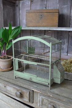 French antique bird cage