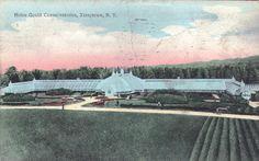 The greenhouse at Lyndhurst