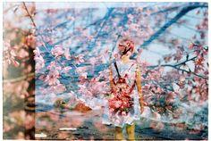 Film swap with Amy Chu | by Khánh Hmoong
