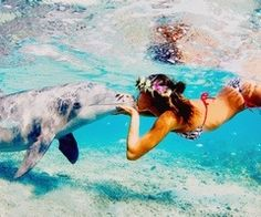 love swimming with dolphins <3