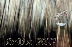 Feliz 2017 · Happy 2017 | por Ana López Heredia