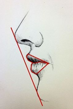 Drawing of a mouth - side view - draw a straight line to see the angle/slant nose to chin; also look for negative space to get the form of the mouth.: