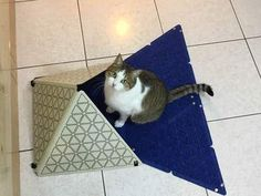 "Puw Dog 7-Piece Separable 17"""""""" Triangle Puzzle Cat Joy Mat(Blue)"