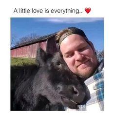 Like Animals, Cute Little Animals, Cute Funny Animals, Animals And Pets, Cute Dogs, Cute Babies, Beautiful Creatures, Animals Beautiful, Cute Animal Videos