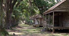 slave cabins evergreen slavery slaves live oaks louisiana plantations ...