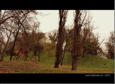 "Il ""montagnone"" ( panoramica 1 ),Ferrara, Emilia Romagna, Italia - The ""Montagnone"" (Overview 1), Ferrara, Emilia Romagna, Italy - Property and Copirights of www.fedetails.net"