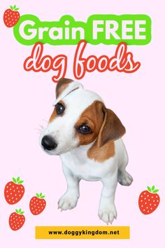 🐶❤️ Puppies ❤️ Dogs ❤️ Dog Breeds ❤️ Pets ❤️Grain FREE dog foods, healthy food for dog. With so many different foods, it can be difficult to know what to feed your dog, food for dogs homemade, healthy foods for dogs, pet food recipe, food for dogs recipes, homemade food for dogs, dog recipes food, homemade pet food, recipe for dog Big Dog Little Dog, Big Dogs, I Love Dogs, Frenchton Dog, Whoodle Dog, Smartest Dogs, Dog Cuddles, Grain Free Dog Food, Dog Heaven