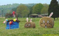 FARM FUN - STRANGE 'EASTER BUNNY' HAY BALES