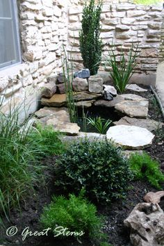 [Small But Beneficial Pond] ... Powerful design - great look. I would love this on the side of the house, outside my bedroom window!
