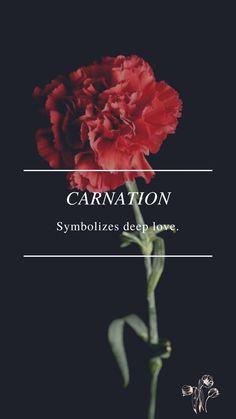 Flower Symbol, Deep Love, Carnations, Symbols, Movie Posters, Movies, Films, Film Poster, Cinema