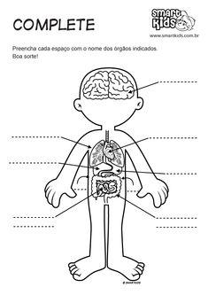 Atividade Corpo Humano Complete Órgãos