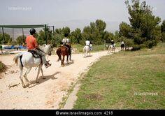 horse riding at bat yaar ranch near amuka, upper galilee