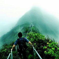 Stairway to heaven in hawaii!