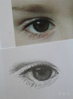Pails of Paint: Steps To Drawing the Eye