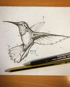 Psdelux is a pencil sketch artist based in Tatabánya, Hungary. He usually draws animal sketches. Psdelux also makes digital drawings. Pencil Art Drawings, Bird Drawings, Art Drawings Sketches, Animal Drawings, Hummingbird Sketch, Bird Book, Animal Sketches, Art Sketchbook, Painting & Drawing