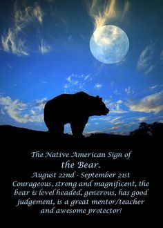 The Native American Zodiac Sign Of The Bear Photograph by Stephanie Laird Native American Zodiac Signs, American Indian Quotes, Native American Totem, Native American Spirituality, Native American Symbols, American History, Bear Spirit Animal, Animal Spirit Guides, Animal Meanings